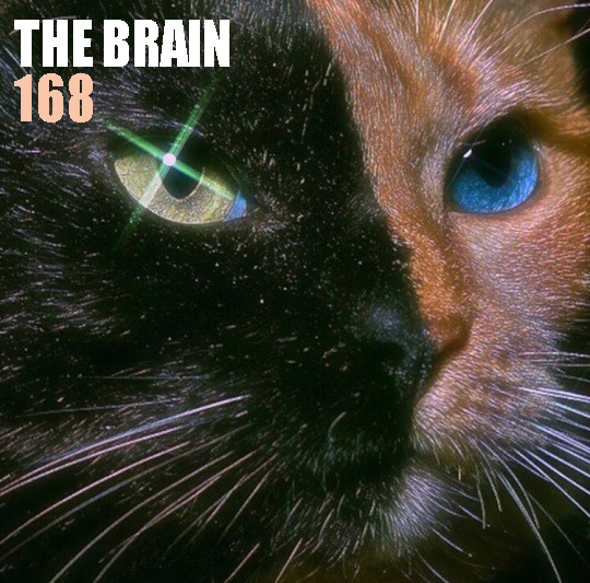 http://www.thebrainradio.com/pochettes/thebrain168.jpg
